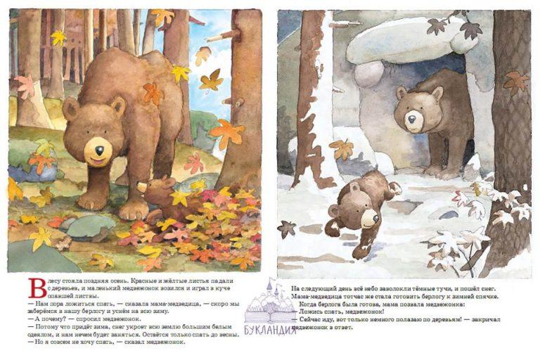 ложись спать медвежонок читать общий (главный) базис