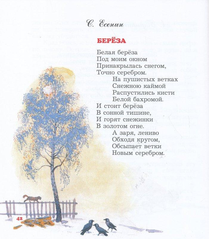 Для распечатывания, картинки под стихи белая береза черно-белые